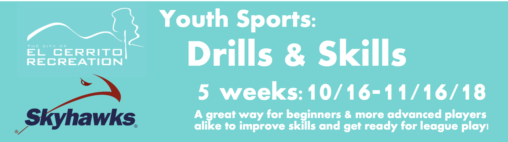 Youth Sports Drills and Skills